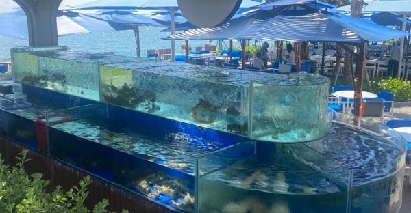 hồ hải sản